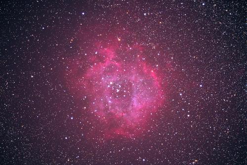 200103バラ星雲.jpg